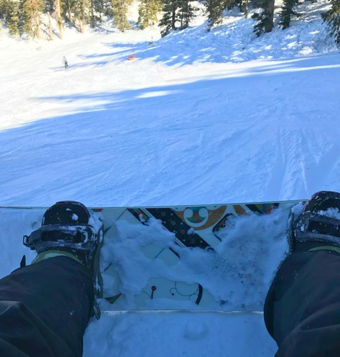 Hit The Slopes in Flagstaff